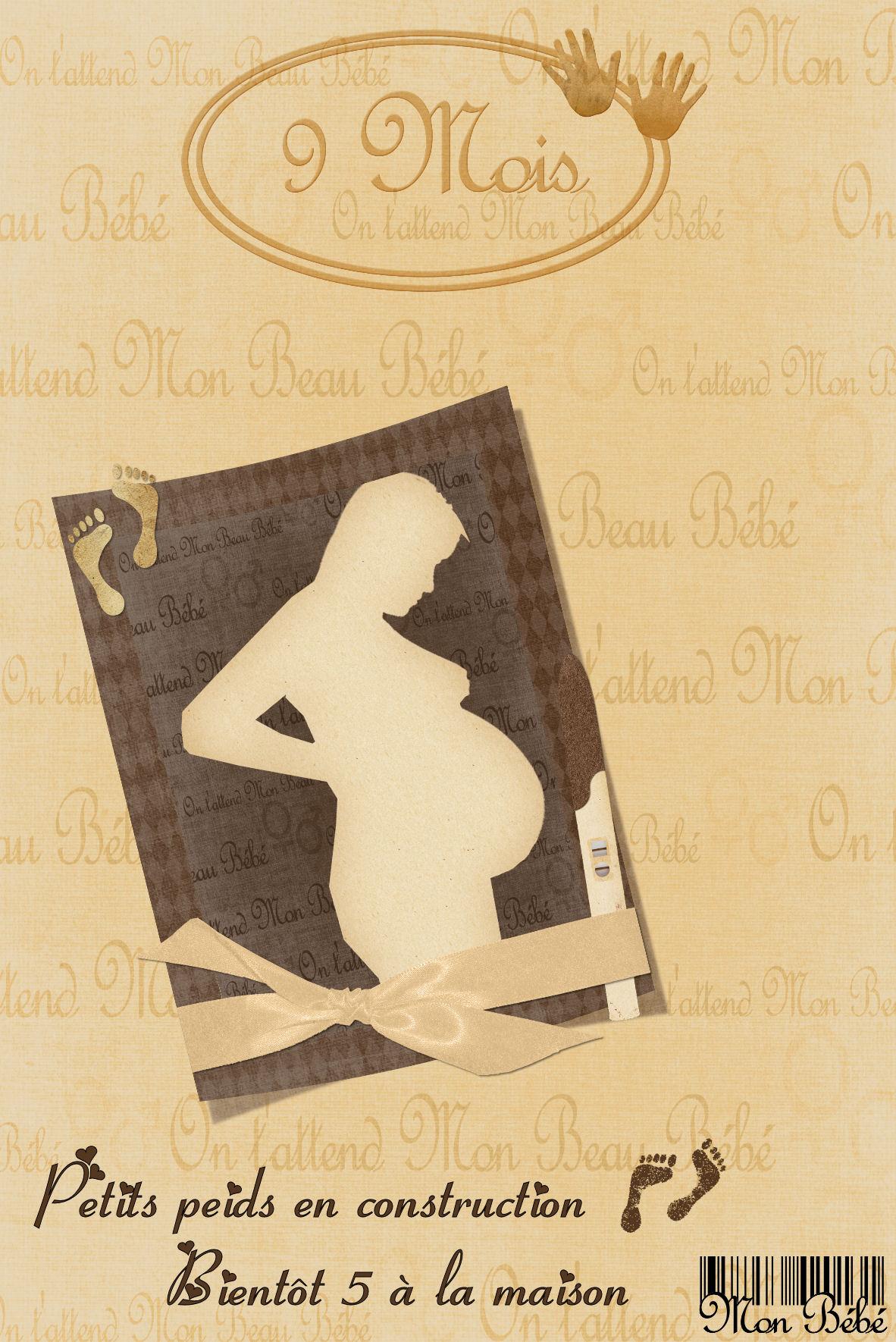 Top Annonce de grossesse - Winniescrap le site des créations de Sab ED47